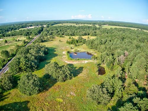 Land, Acreage In East Texas : Palestine : Anderson County : Texas