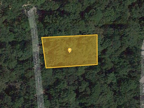 .21 Acres For Sale In San Jacinto : Carlisle : San Jacinto County : Texas