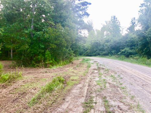 Residential Lot Washington, Nc : Washington : Beaufort County : North Carolina