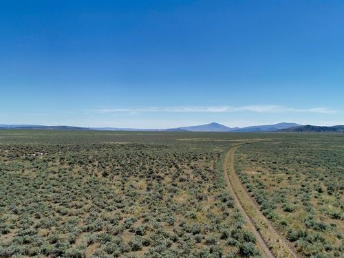 40 Acre Hemp Farm Pro : Termo : Lassen County : California
