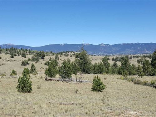 2 Mixed Use Ag Lots,Combined As 40 : Hartsel : Park County : Colorado
