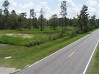 4+/, Acres Land For Sale Kingslan : Kingsland : Camden County : Georgia