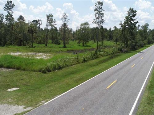 4+/, Acres Land For Sale Kingslan : Kingsland : Camden County : Georgia