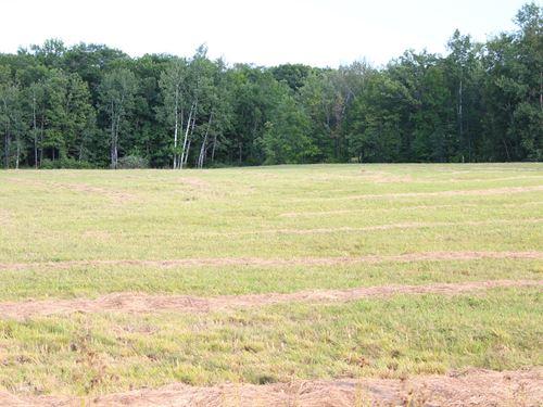 20 Acres Land Mille Lacs County : Onamia : Mille Lacs County : Minnesota