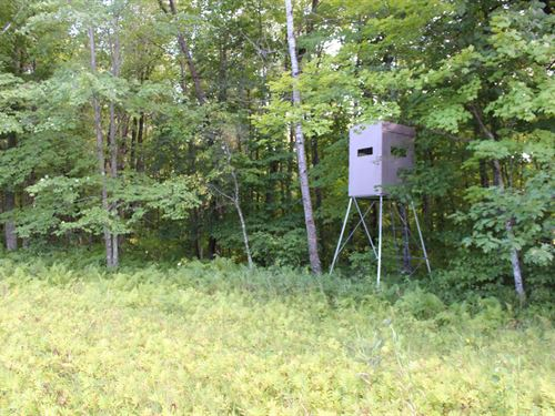 Mille Lacs County 20 Acres For Sale : Onamia : Mille Lacs County : Minnesota