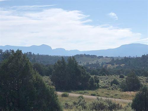 Land Gated Community Heron Lake : Rutheron : Rio Arriba County : New Mexico