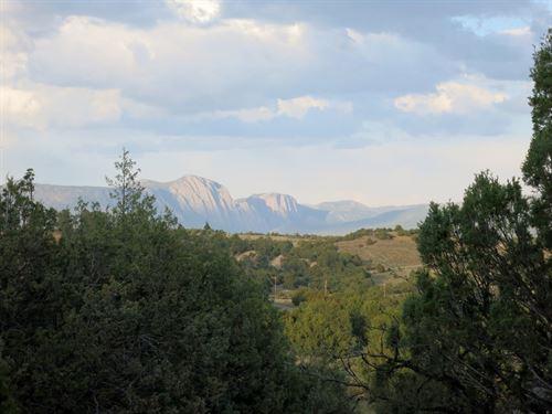 Large Acerage Laguna Visata S/D : Rutheron : Rio Arriba County : New Mexico