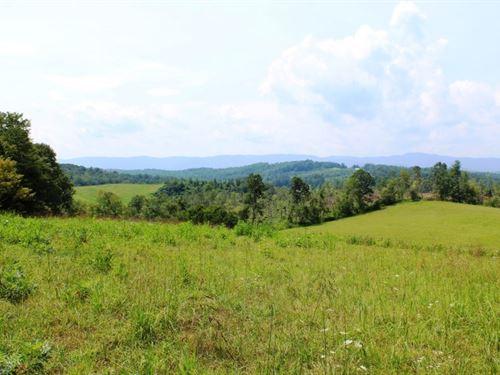 25.48 Acres Land Patrick County : Stuart : Patrick County : Virginia