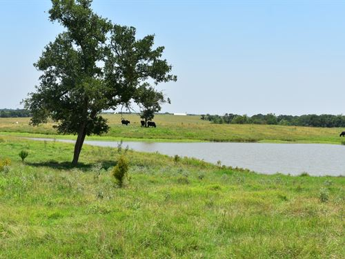 27.28 Acres With Pond And Sm Home : Coupland : Williamson County : Texas