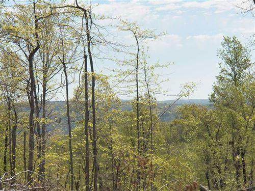 20 Acres, /// / Views & Bear/////D : Shirley : Van Buren County : Arkansas