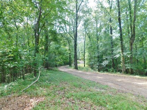 32.81 Acres Surveyed Land For Sale : Natchez : Adams County : Mississippi