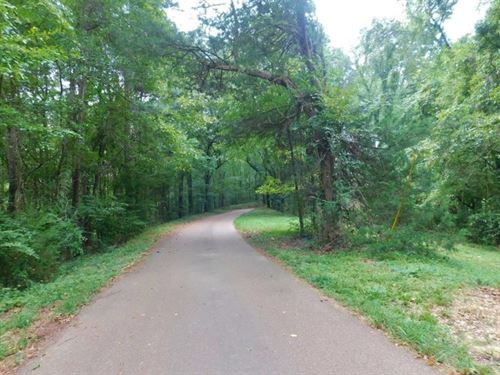 3.1 Acre Wooded Land For Sale Natch : Natchez : Adams County : Mississippi
