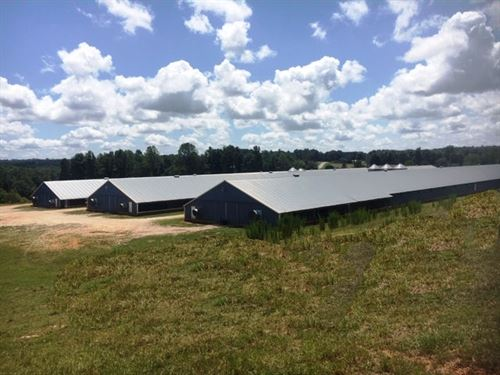 Three House Broiler Poultry Farm : Woodland : Randolph County : Alabama