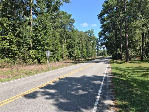 Academy Road Estate Lot : Walterboro : Colleton County : South Carolina