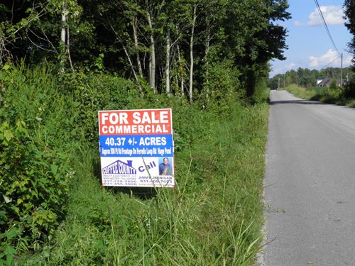 40+/- Acre Tract : Beechgrove : Coffee County : Tennessee