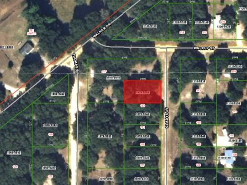 For Sale $99 Down, Seller Financing : Interlachen : Putnam County : Florida