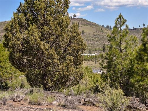 Oregon Land Sale, $500 Down : Sprague River : Klamath County : Oregon