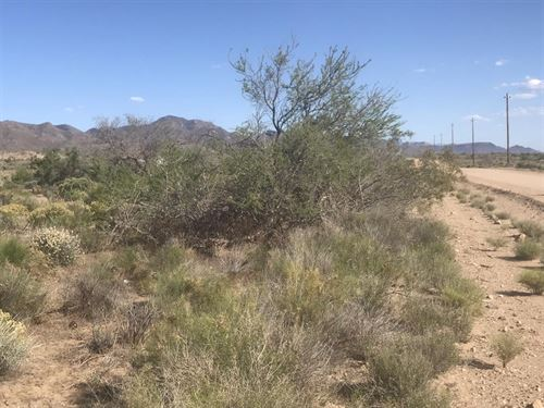 Az Land Sale- 249 Down And 119/Mth : Chloride : Mohave County : Arizona