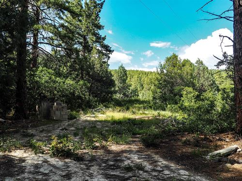 Secluded Lot Well Elec, Brazos : Chama : Rio Arriba County : New Mexico