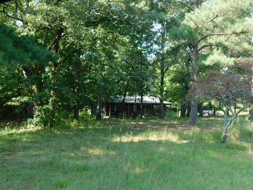 Private Cabin Tn, Wooded Acreage : Michie : McNairy County : Tennessee