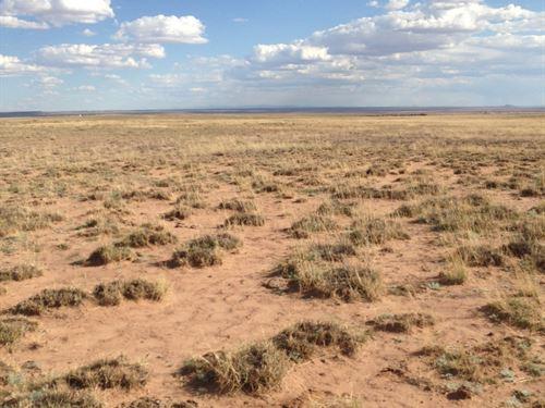 Thinking Of Moving To Az Check This : Holbrook : Navajo County : Arizona