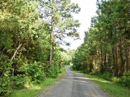 Lot For Sale, 4 Acres, Sailes, LA : Sailes : Bienville Parish : Louisiana