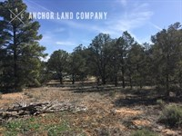 $499 Down Then $79/ MO : Grants : Cibola County : New Mexico