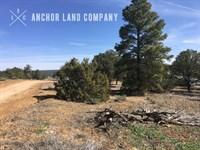 $499 Down Then $79 /Mo : Grants : Cibola County : New Mexico