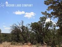 $499 Down Then $79/Mo : Grants : Cibola County : New Mexico