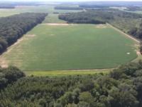 40 Acre Farm, Big Deer & Turkey : Russell : White County : Arkansas
