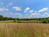 Rural Dale Rd, 40 Acres : Chandlersville : Muskingum County : Ohio