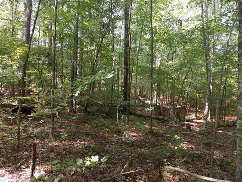 Apex Homesite : Apex : Chatham County : North Carolina