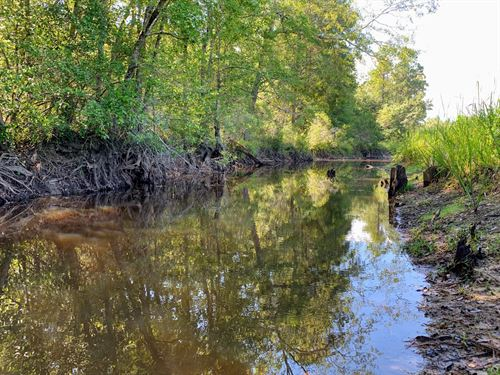 Poley Creek Preserve : Adrian : Johnson County : Georgia
