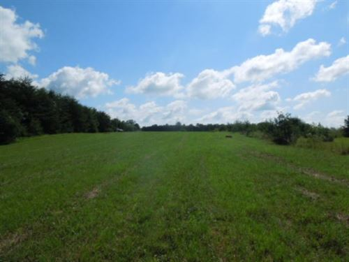 8.73 Ac, No Restrictions Ideal : Cookeville : Jackson County : Tennessee