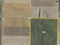 Prime Upland Hunting And Crp : Dighton : Lane County : Kansas