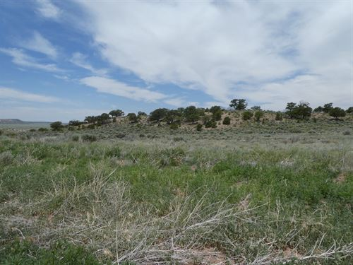 Great Price And Location : Fort Garland : Costilla County : Colorado