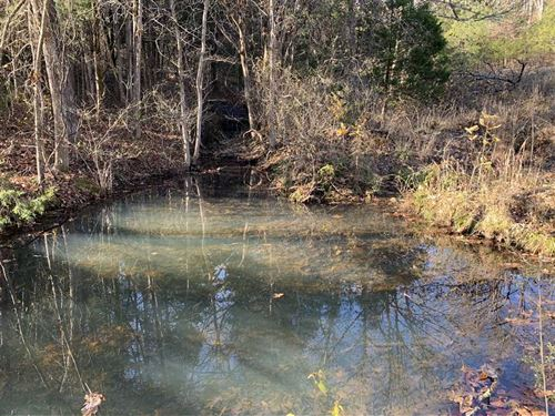 120 Acres in Chadwick, Mo, Mostly : Chadwick : Christian County : Missouri