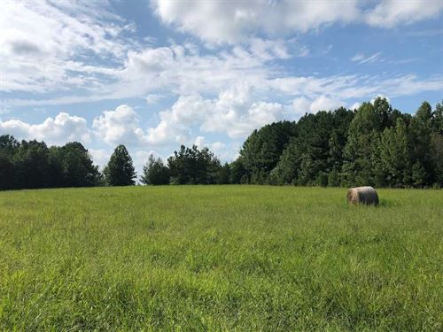 12 Acres of Pasture And Timber Lan : Oxford : Granville County : North Carolina