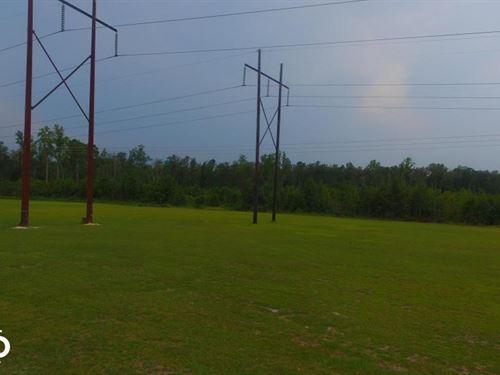7.5 Acres Leland : Leland : Brunswick County : North Carolina