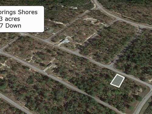 Partially Cleared .23 Acre Lot : Ocklawaha : Marion County : Florida