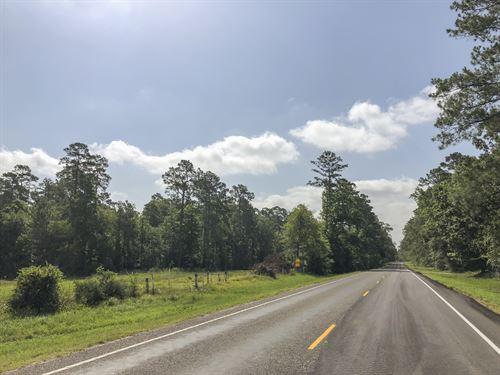 25 Acres Fm 247 : Huntsville : Walker County : Texas