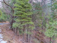 Nicely Wooded, Overlooking Creek : Arnold : Calaveras County : California