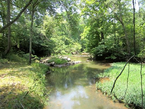 78 Wooded Acres, A Creek : Delta : Clay County : Alabama