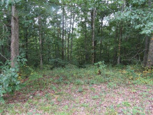 5+ Ac Totally Wooded, Mtn Views : Celina : Clay County : Tennessee