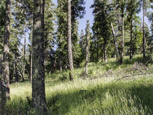 Cloudcroft, Otero County, Nm : Cloudcroft : Otero County : New Mexico