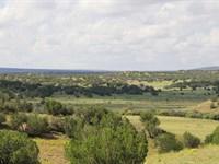 38 Acres Bordering State Land : Saint Johns : Apache County : Arizona