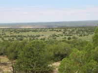 Quiet Secluded Northern Az Ranch : Saint Johns : Apache County : Arizona