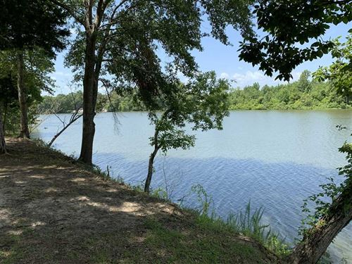 Waterfront Lot on The Tombigbee RI : Panola : Sumter County : Alabama