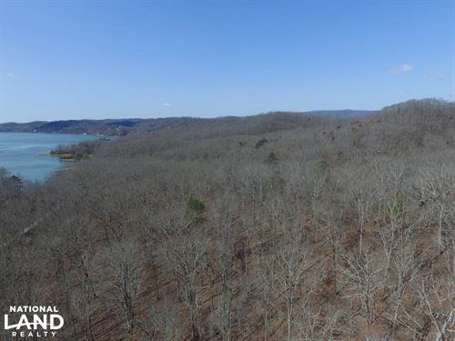 Wooded Recreation Property Near Wat : Rockwood : Roane County : Tennessee