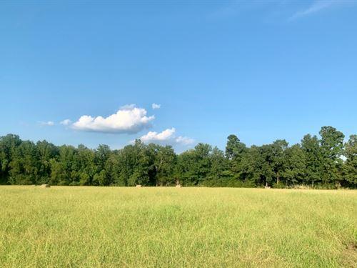 10.7 Acres In Oktibbeha County : Starkville : Oktibbeha County : Mississippi